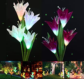Ruentech - Juego de 2 lámparas solares LED para jardín, diseño de flores: Amazon.es: Iluminación