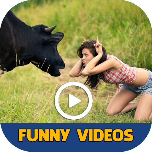 Funny Videos - Best Funny Videos Compilation