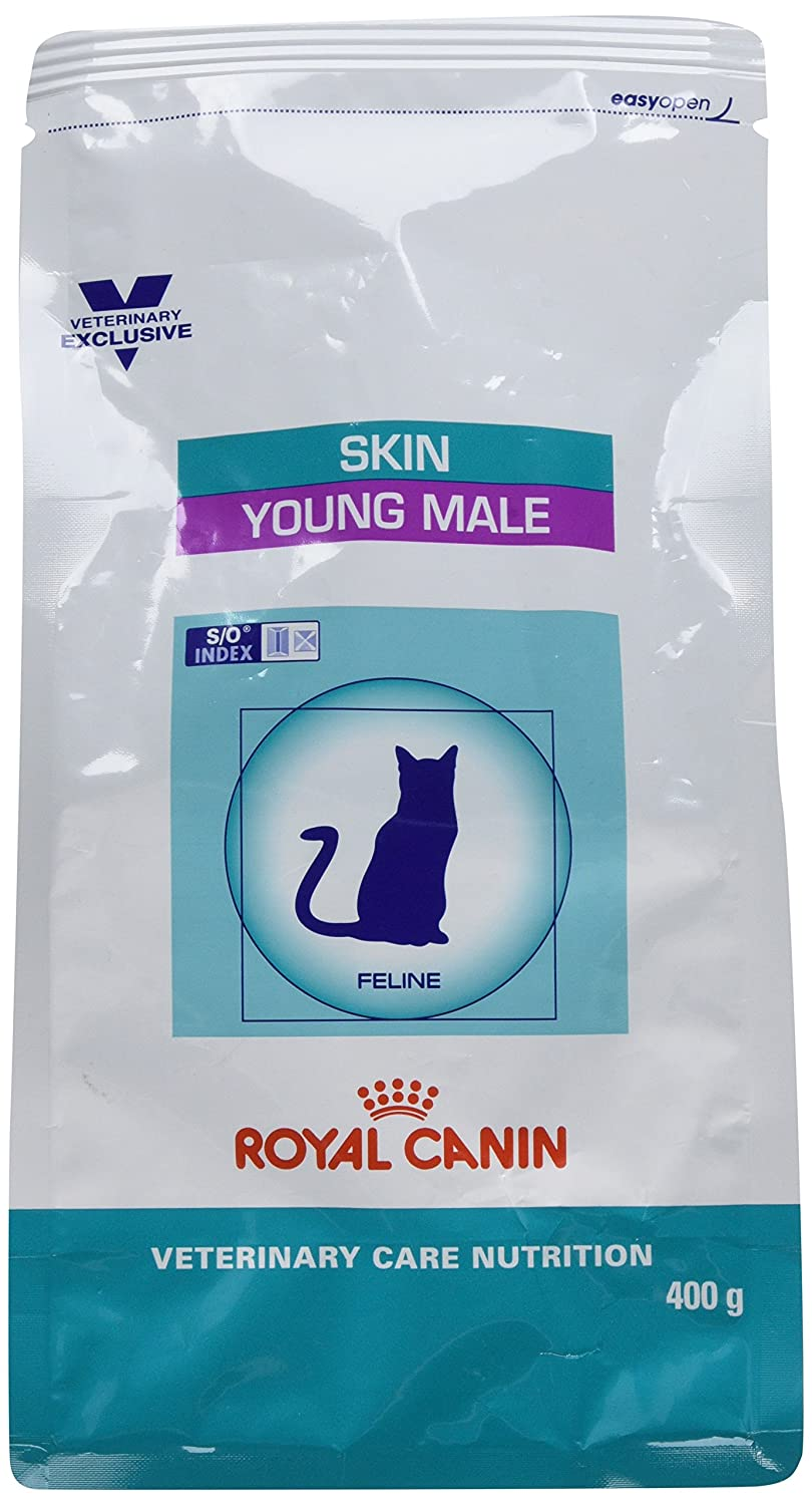 ROYAL CANIN Cat Skin Young Male S/O Cat Food, 0,4 kg: Amazon.es: Productos para mascotas