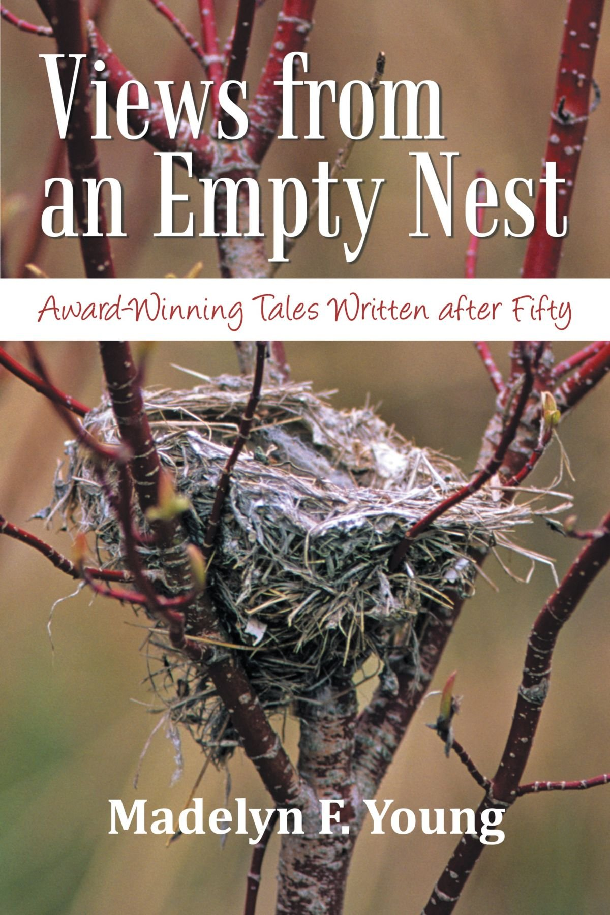 Views From An Empty Nest: Award-Winning Tales Written After Fifty pdf epub
