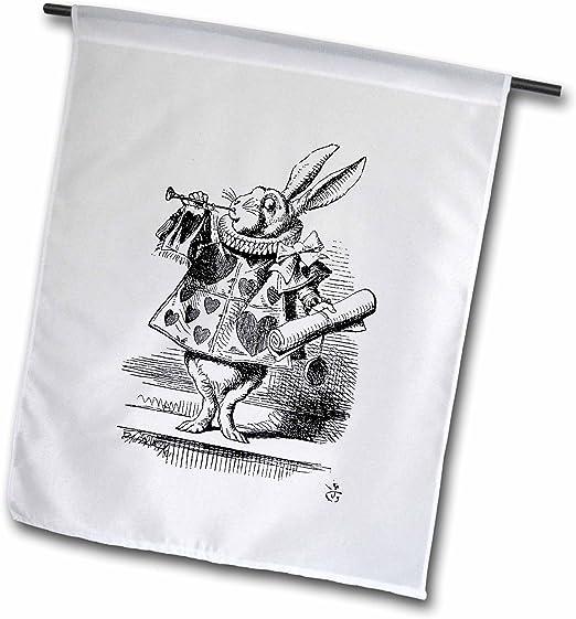 3dRose FL 193795 _ 1 Alicia en el país de Las Maravillas Conejo ...