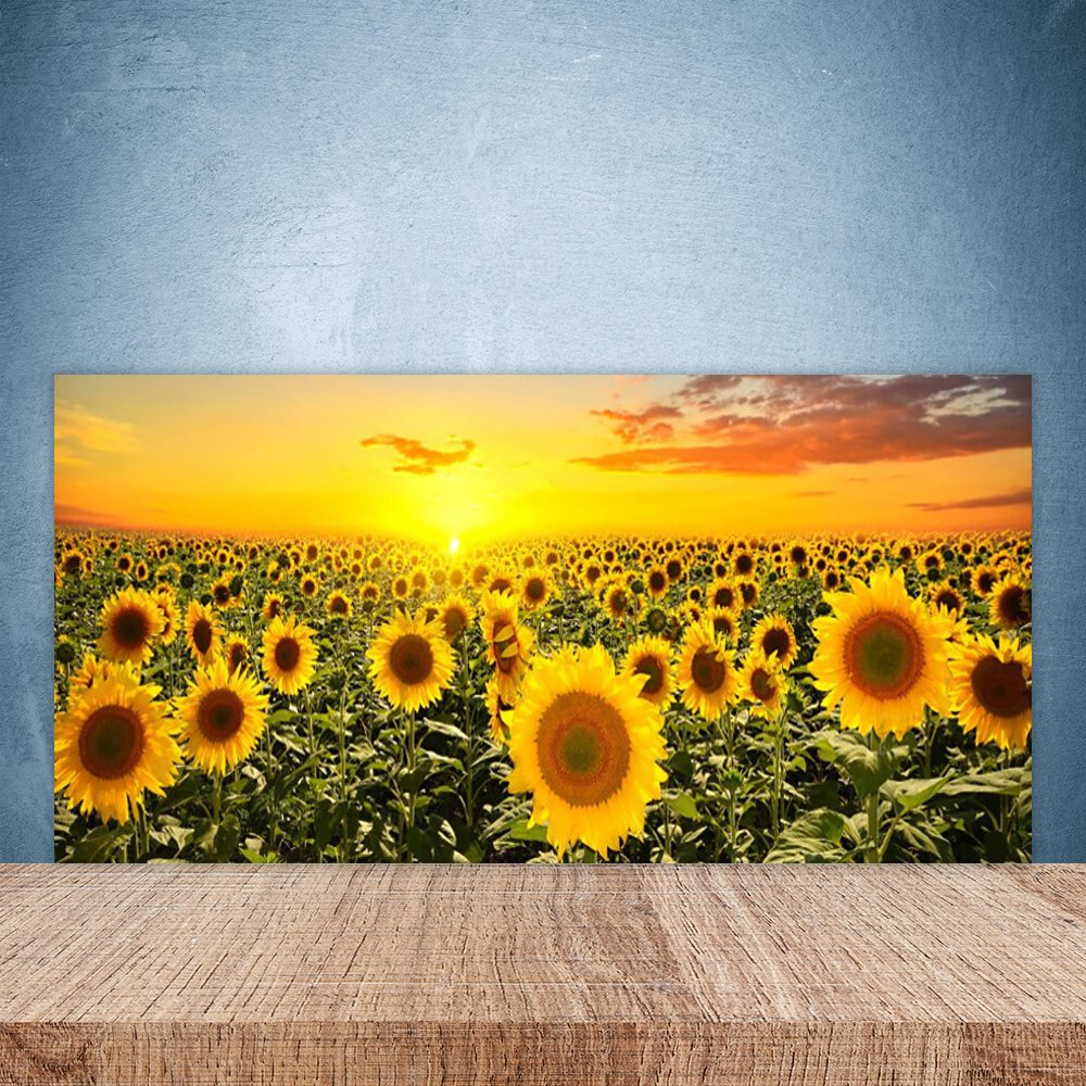 Glass Splashback for Kitchen by Tulup 100x50cm Splashback printed on Toughened / Tempered Safety Real Glass Theme: Sunflowers Floral