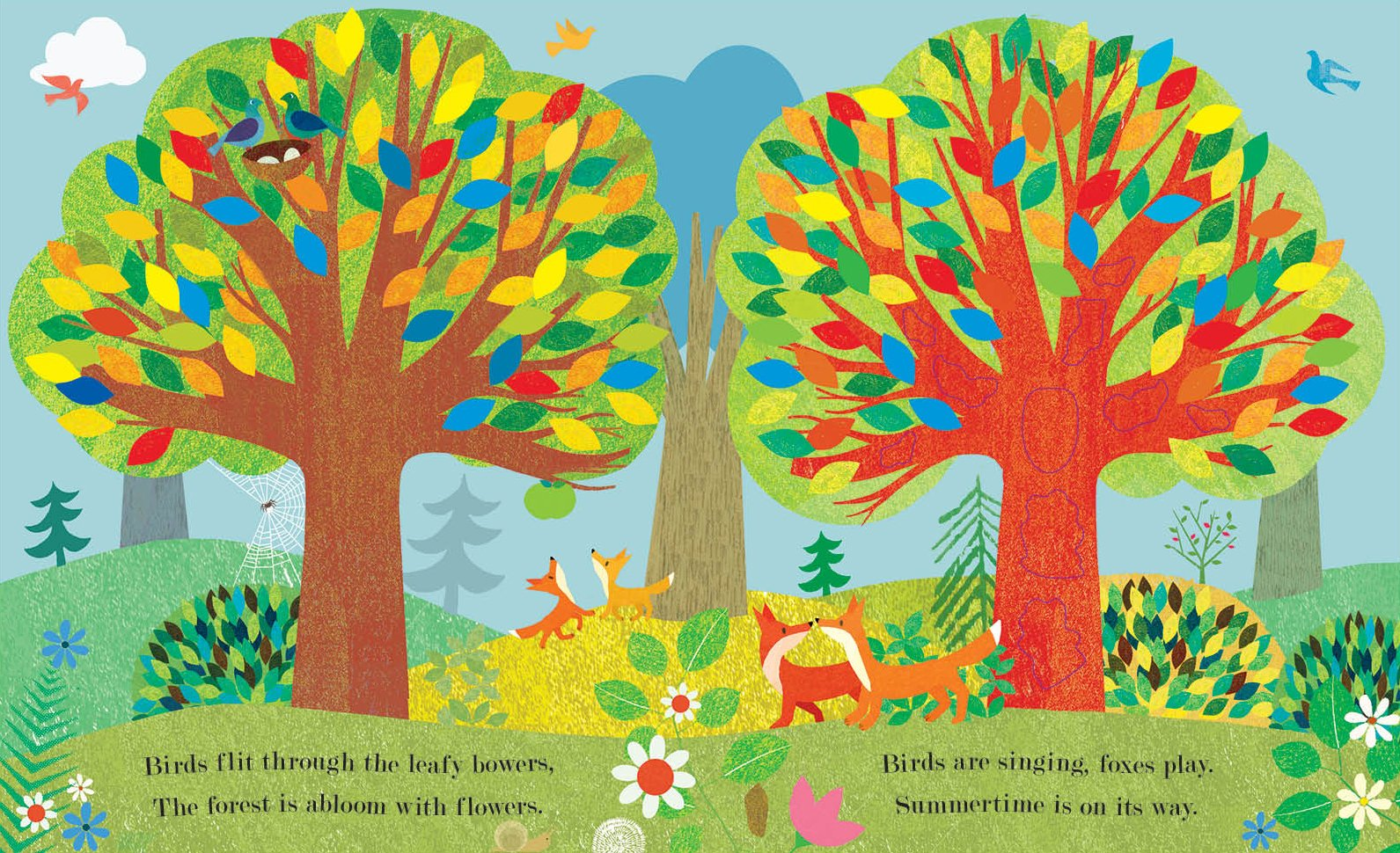 amazon com tree a peek through picture book 9781101932421