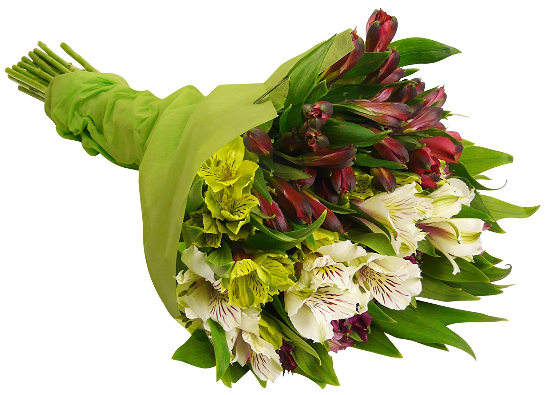 Amazon benchmark bouquets assorted peruvian lilies with vase amazon benchmark bouquets assorted peruvian lilies with vase fresh cut format lily flowers grocery gourmet food izmirmasajfo