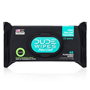 Dude Products Wipes Flushable Wet Wipes Dispenser, Mint Chill, 48Count - Scented Wet Wipes with Vitamin-E, Aloe, Eucalyptus & Tea Tree Oils for at-Home Use, Septic & Sewer Safe, Pack of 1