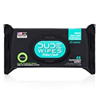 DUDE Wipes Flushable Wet Wipes Dispenser, Mint Chill, 48Count - Scented Wet Wipes...