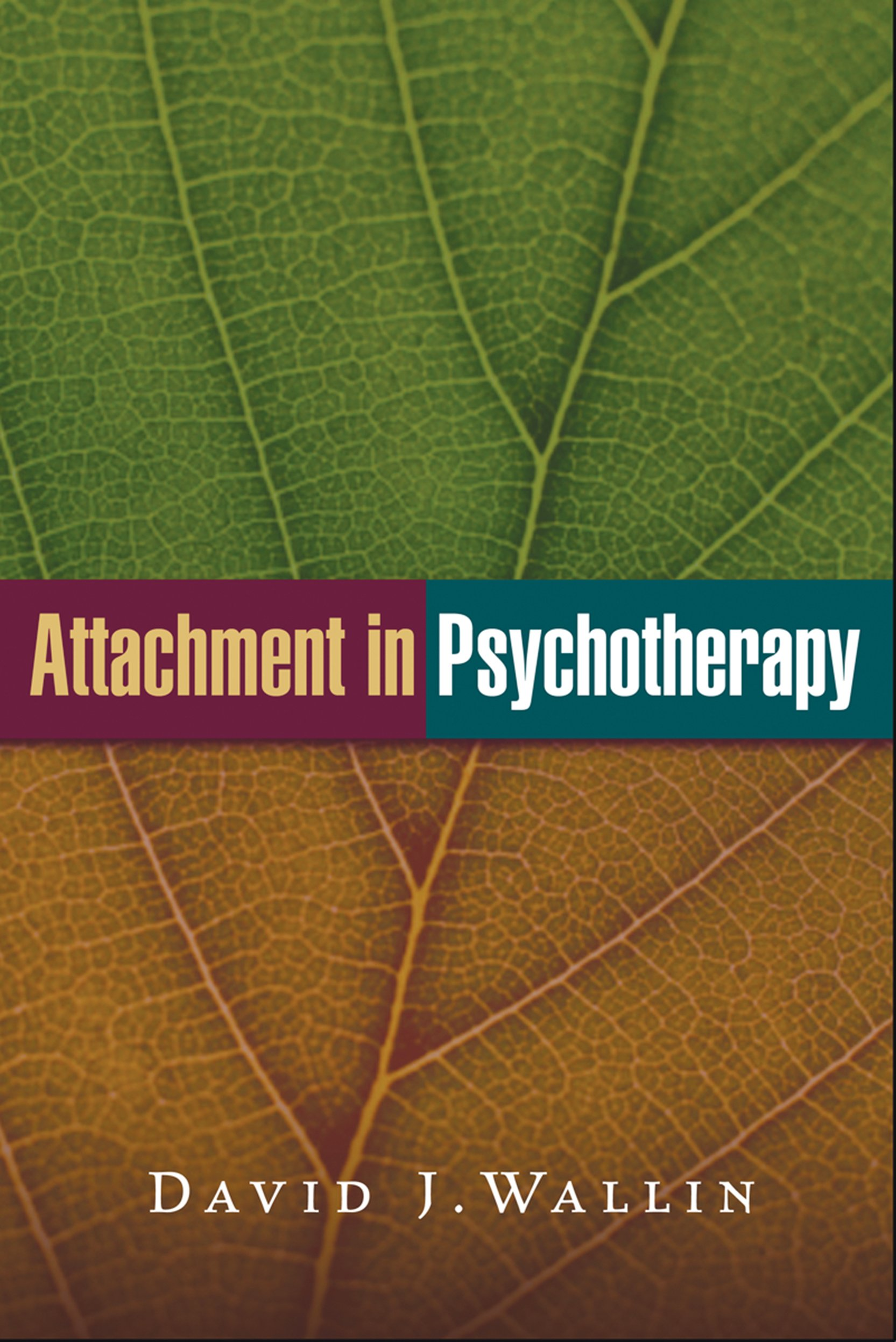 Image result for cover of attachment in psychotherapy