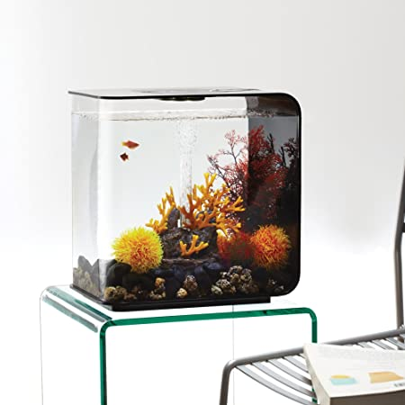 biOrb FLOW 30 Acuario con luz LED - 8 galones, negro por biOrb: Amazon.es: Productos para mascotas