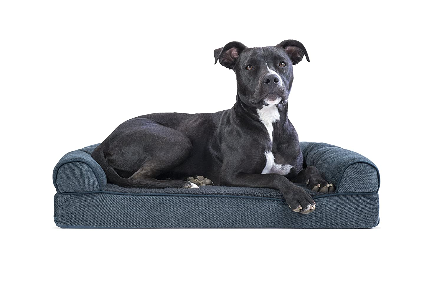 Orion bluee Medium Orion bluee Medium Furhaven Pet Dog Bed   Memory Foam Faux Fleece & Chenille Couch Sofa-Style Pet Bed for Dogs & Cats, Orion bluee, Medium