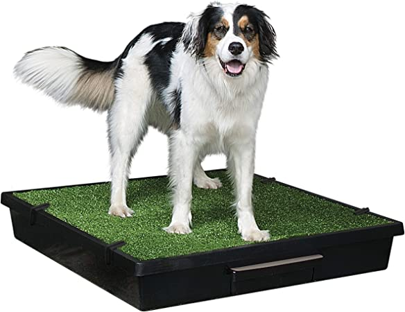 PetSafe Pet Loo Portable Indoor