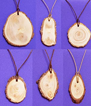 Siberian cedar pendant with bark ringing cedars of russia kin siberian cedar pendant with bark ringing cedars of russia kin domains gold collection crafted in kin domain sunny meadow siberia russia by kins aloadofball Image collections