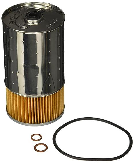 Bosch 72162 WS taller motor filtro de aceite: Amazon.es ...