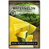 Sow Right Seeds - Yellow Crimson Sweet Watermelon Seed for Planting - Non-GMO Heirloom Packet with Instructions to Plant a Home Vegetable Garden - Great Gardening Gift (1)