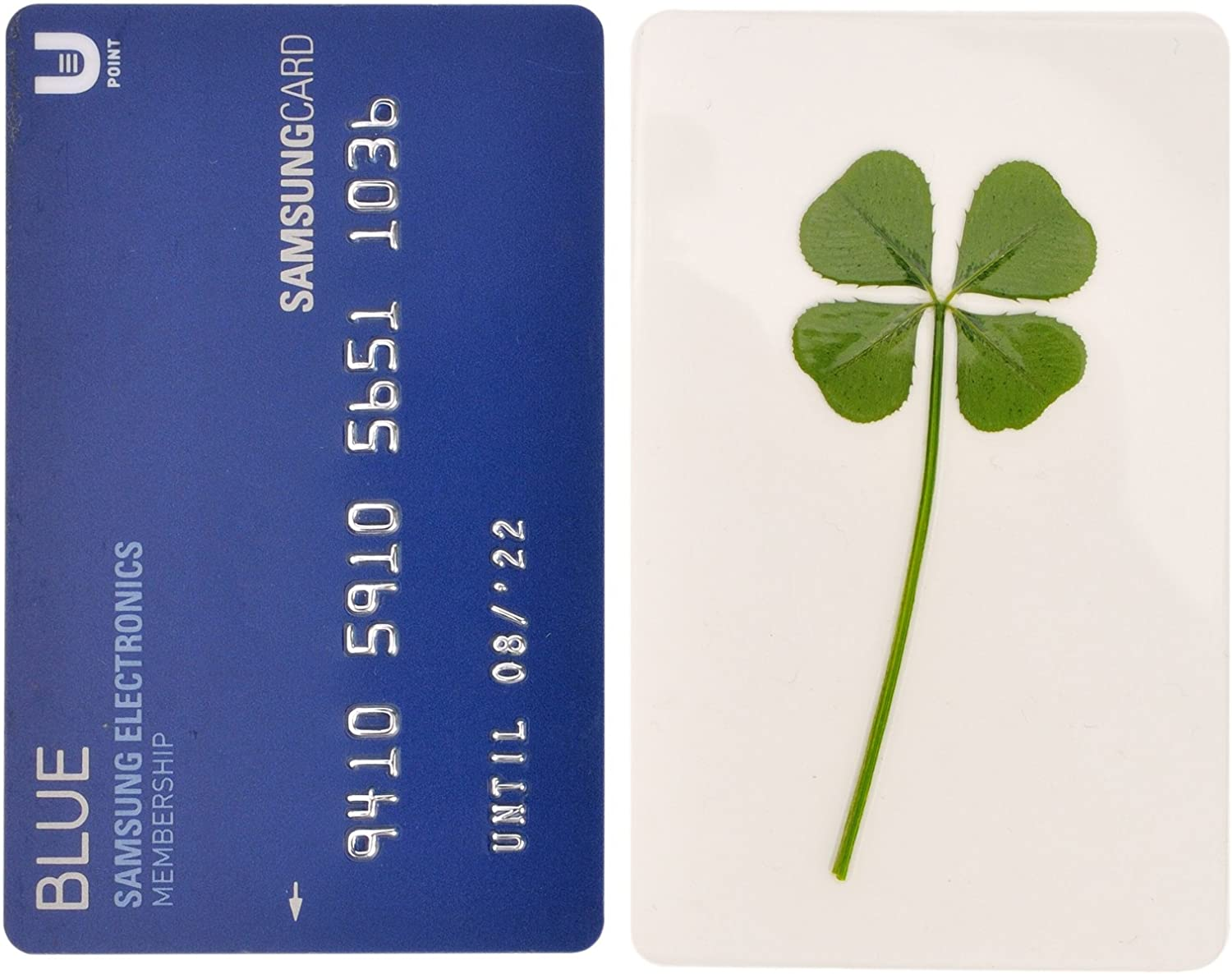 Saint Patrics Day Bookmarks Irish Shamrock Good Luck Charm for Smartphone Wallet Case Amulet Purse Coating Gift Thanks Card M Vintage Repertory Genuine Real 4 Four-Leaf Green Clover St