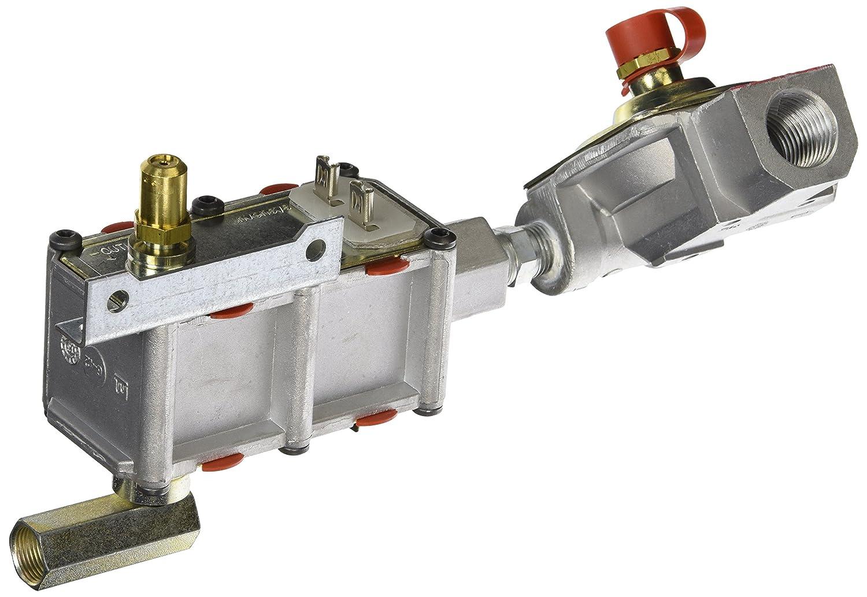 General Electric WB19K10043 Oven Valve and Pressure Regulator