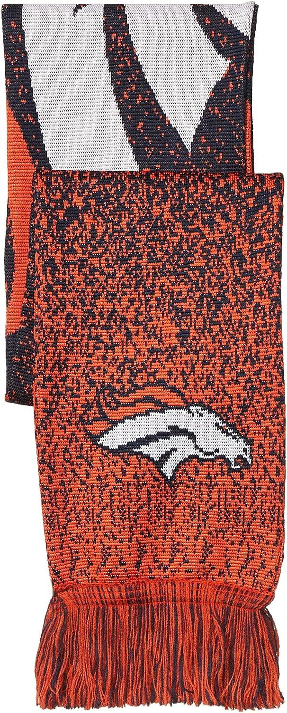 FOCO NFL Polyknit Big Logo Scarf