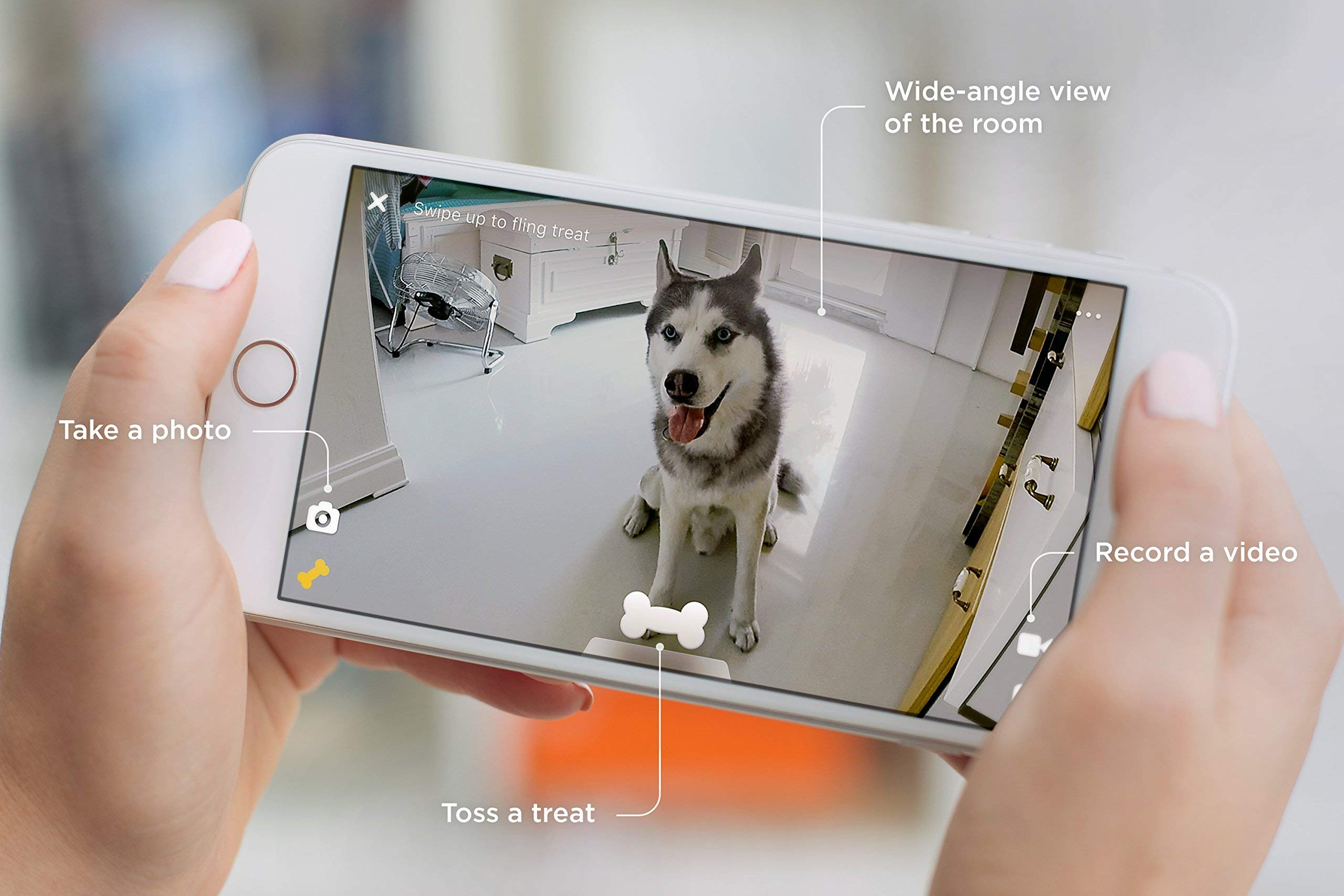 Petcube Bites Pet Camera with Treat Dispenser. Monitor Your Pet Remotely with HD 1080p Video, Two-Way Audio, Night Vision, Sound and Motion Alerts. Compatible with Alexa (Renewed) by Petcube (Image #4)