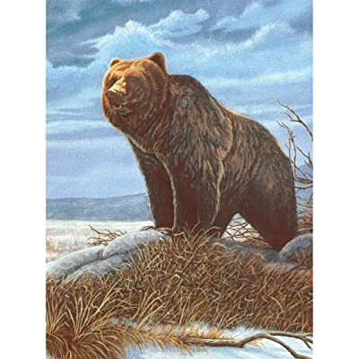 ROYAL BRUSH 8.75 by 11.75-Inch Junior Paint by Number Kit, Small, Grizzly Bear: Arts, Crafts & Sewing