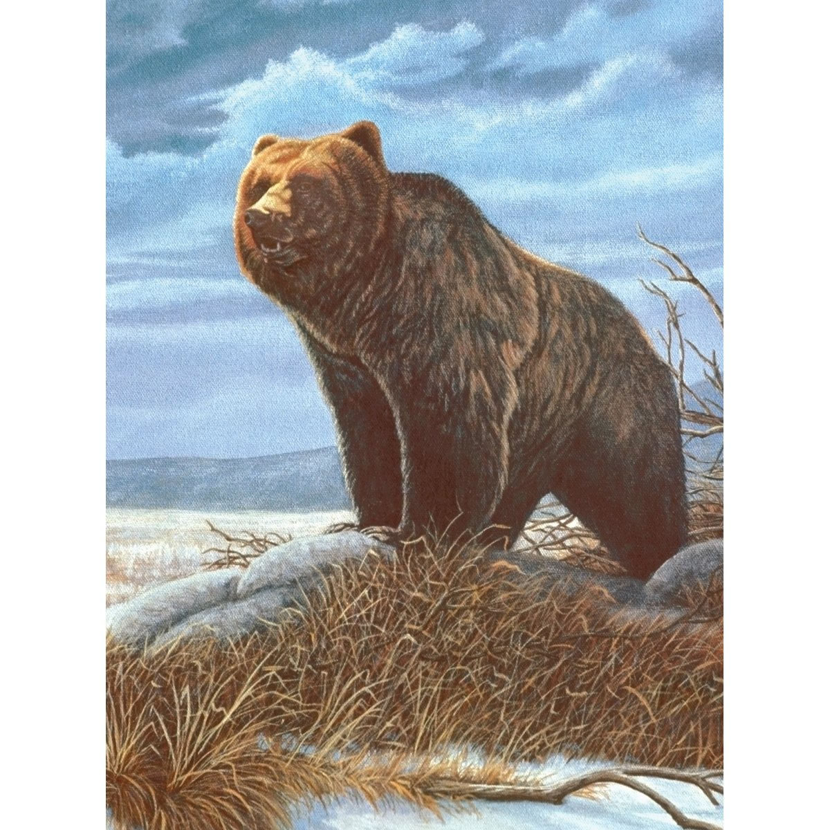 Royal Brush 8.75 by 11.75-Inch Junior Paint by Number Kit, Small, Grizzly Bear PJS-82