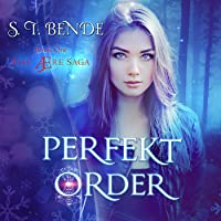Perfekt Order: The Ære Saga, Book 1
