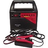 Filmer 36198 Chargeur de batterie 6 A / 6 & 12 V