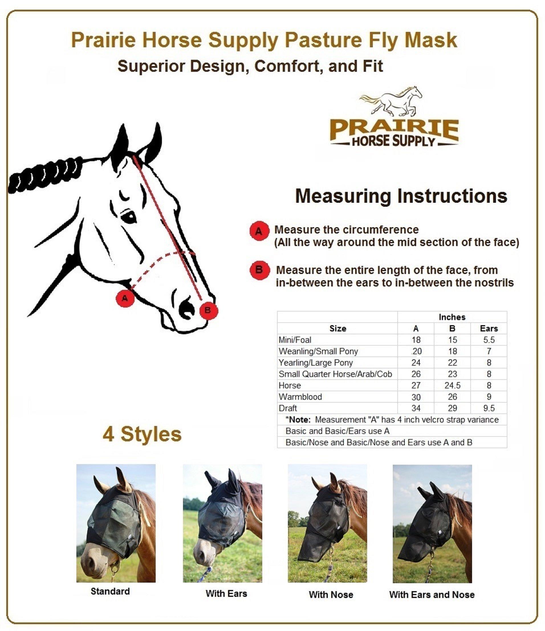 Amazon com: Prairie Horse Supply