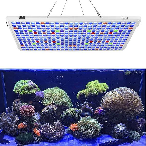 Luz De Acuario Relassy 300 W De Espectro Completo Led Coral Arrecife Luz Para Agua Salada De Agua Dulce Tanque De Peces Con 2 Regulables Luz Blanca Y Azul Home Improvement Amazon Com
