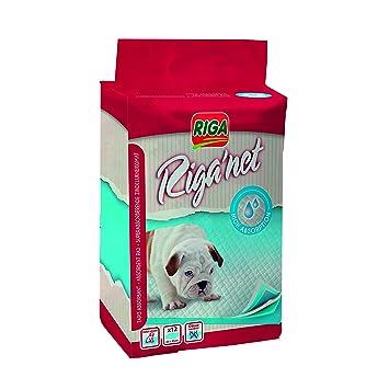 Riga 3632 absorbente almohadillas para perros paquete de 12: Amazon.es: Productos para mascotas