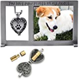 Cathedral Art Pet Memorial Frame with Vial for Ashes