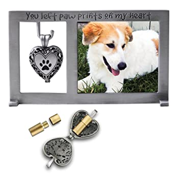 Amazon.com: Cathedral Art PF404 Pet Memorial Frame with Vial for ...