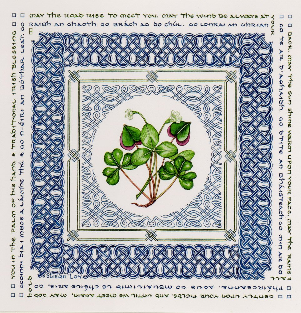 Amazon Irish Blessing Note Cards Blank Note Cards Office