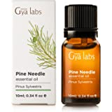 Pine Needle Essential Oil 10 ml - 100% Pure, Undiluted, Natural & Therapeutic Grade for Aromatherapy, Skin and Relaxation - Gya Labs