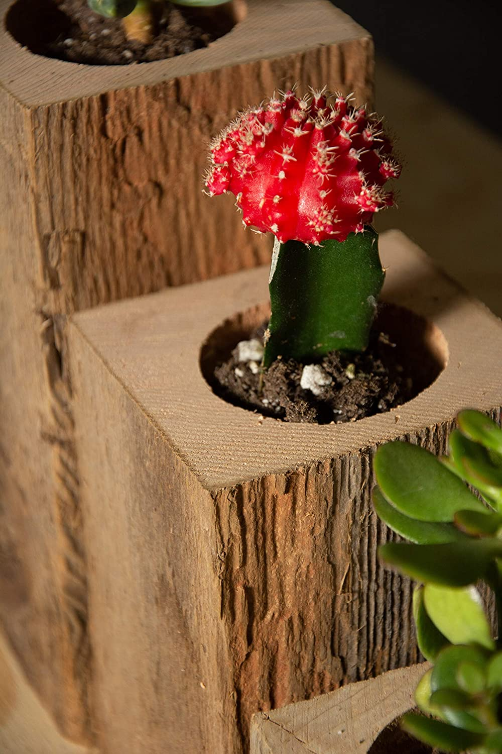 Succulent Planter Box Set Made from Reclaimed Wood – Perfect for Real or Faux Succulent Plants Set of 3, Rustic