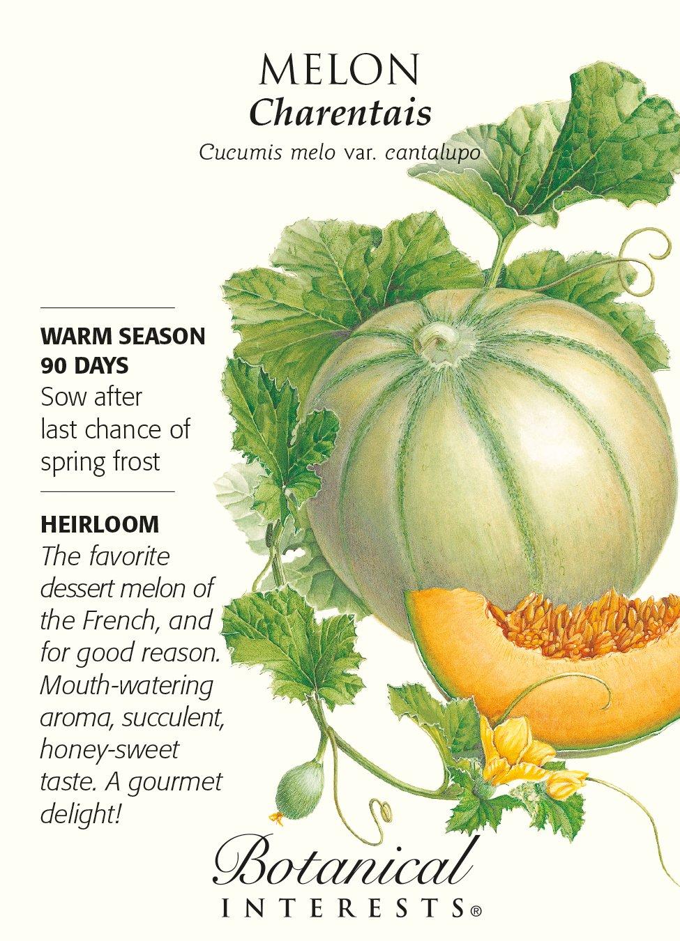 Melon Charentais Seed Botanical Interests 0186 BI - Melon - Charentais