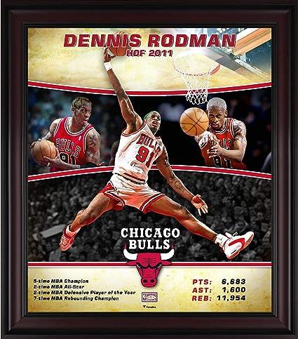 64f6bacde69 Dennis Rodman Chicago Bulls Framed 15