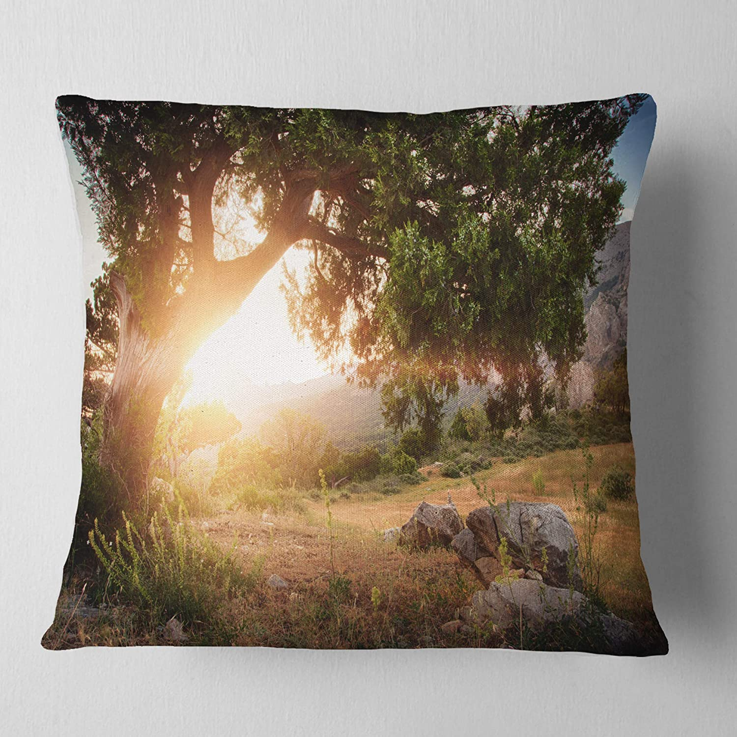 x 26 in Sofa Throw Pillow 26 in Designart CU16432-26-26 Picturesque Foros Mountains Abstract Cushion Cover for Living Room