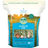 Oxbow Animal Health Alfalfa Hay, For Rabbits, Guinea Pigs, And Small Pets, Grown In The USA, Hand-Selected And Hand…