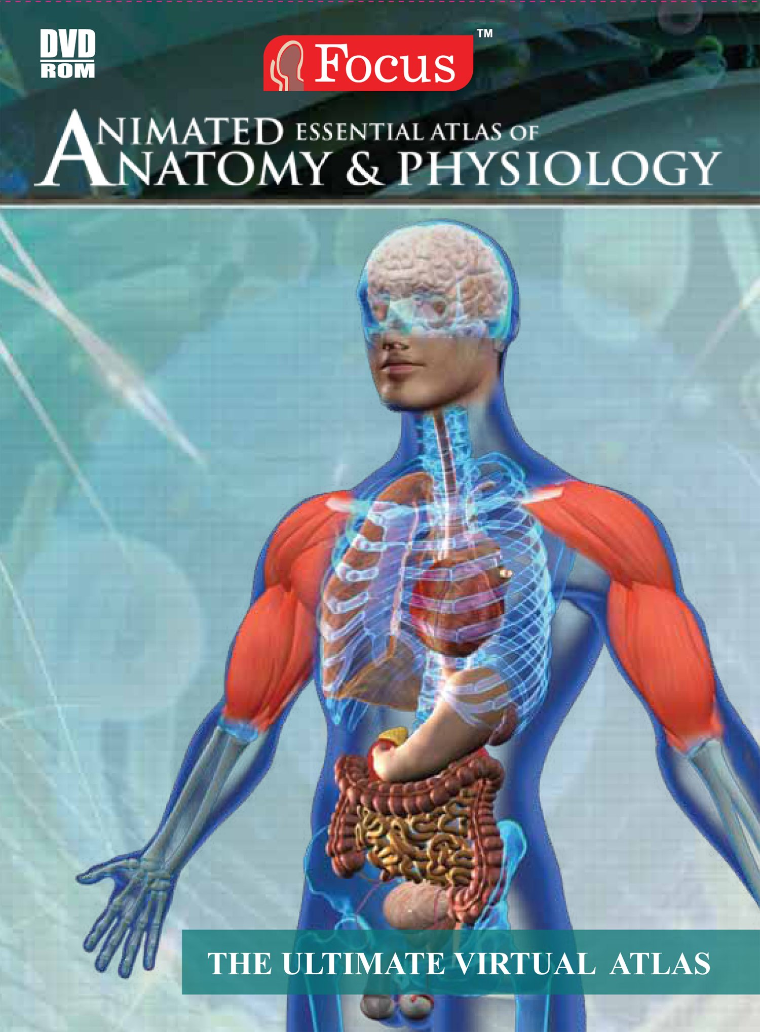 Buy Animated Essential Atlas of Anatomy & Physiology Book Online at ...