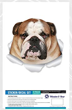 LARGE british english bulldog car bonnet side vinyl sticker graphic wall art vw
