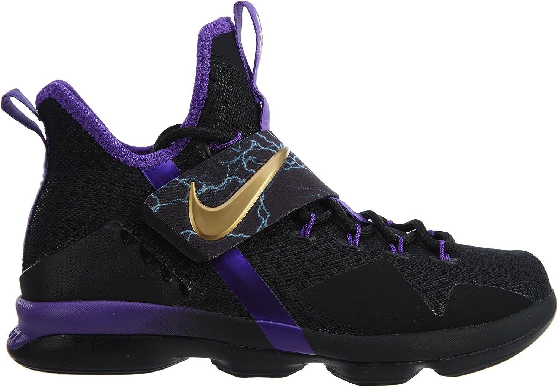 Nike Lebron Xiv Hwc Big Kids Style AA3258-590 Size 6.5 Y US