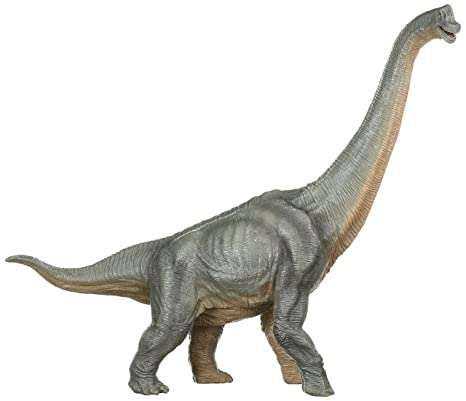 amazon com papo the dinosaur figure brachiosaurus toys games