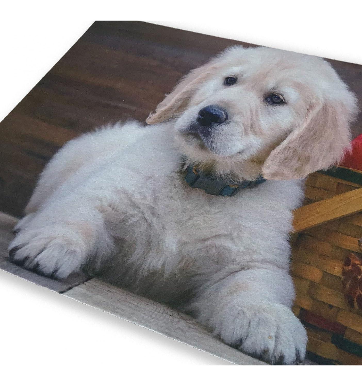 tex family Tappeto ZERBINO Digital CM.40X60 Cane Cucciolo Labrador