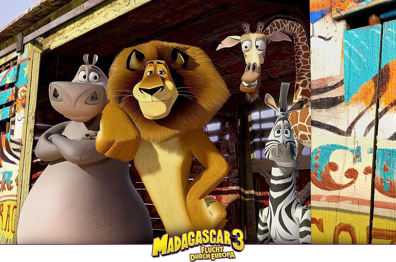 Madagascar 3 Flucht Durch Europa Amazon De Darnell Eric Mcgrath Tom Vernon Conrad Dvd Blu Ray