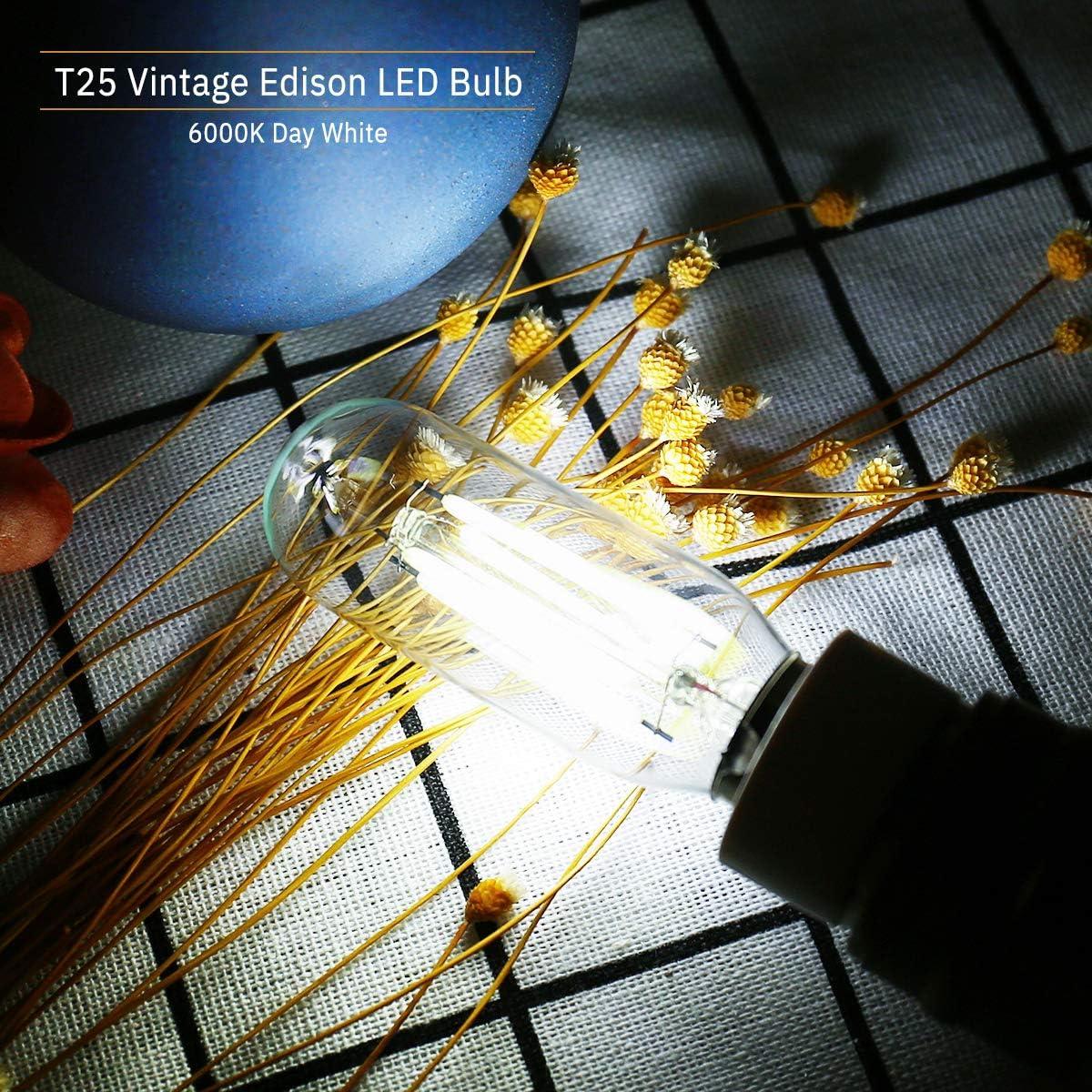 Gl/ühbirne f/ür Dunstabzugshaube Kaltes Wei/ß 6000K DORESshop E14 LED Leuchtmittel f/ür Dunstabzugshaube Ersetzt 15 Watt 2er-Pack Nicht Dimmbar 2W Dunstabzugshaube lampe T25 150LM Edison Gl/ühlampe