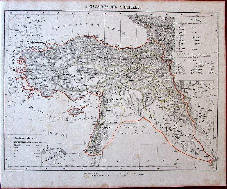 Amazon.com: Asiatic Turkey in Asia Syria Bagdad Iraq Middle ...