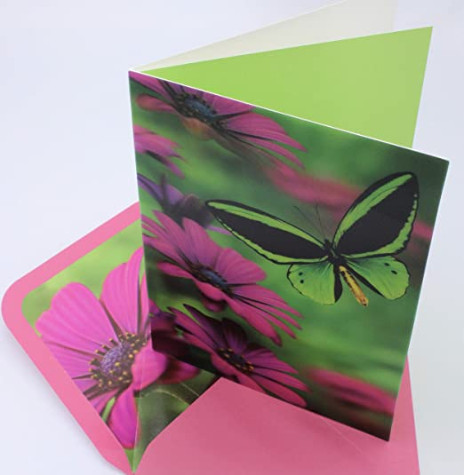 Papyrus Mother/'s Day Greeting Card New in packaging Butterfly Kindness Flower