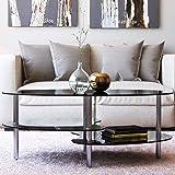Ryan Rove Elm 38 Inch Oval Modern Two Tier Black Glass Coffee Table