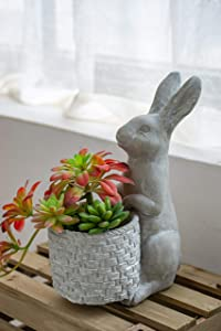 A&B Home Gray Cement Standing Bunny Planter - Indoor and Outdoor Décor, Rabbit or Hare Design, Herb Garden Succulents and Flower Pot, Cute Décor Size 20''x7''x12''