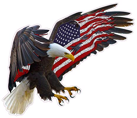Amazoncom American Eagle American Flag Huge 24 X 21 Decal Free