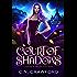 Court of Shadows (Shadow Fae Book 1) (English Edition)